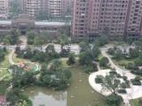 绿地二期93平米49.8万急售24楼全新毛坯房好房急售