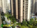 【免税房】绿地二期 皖江大道 绿地实验学校 毛坯房