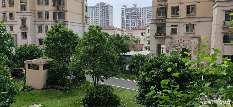 迎江御墅小高层+131平精装三房+拎包入住+证满两年