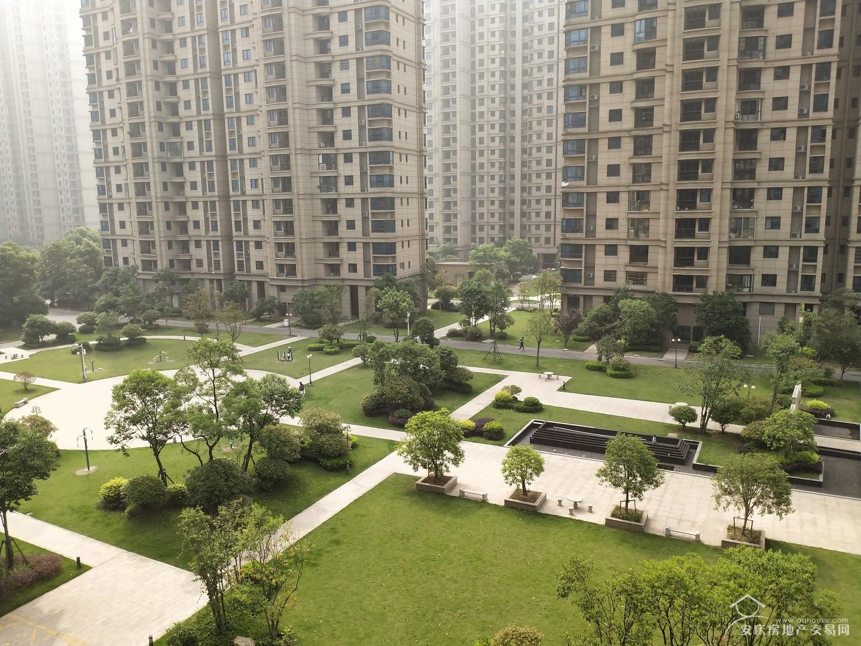 碧桂园一号公园 97平开发商精装三房  证满两年