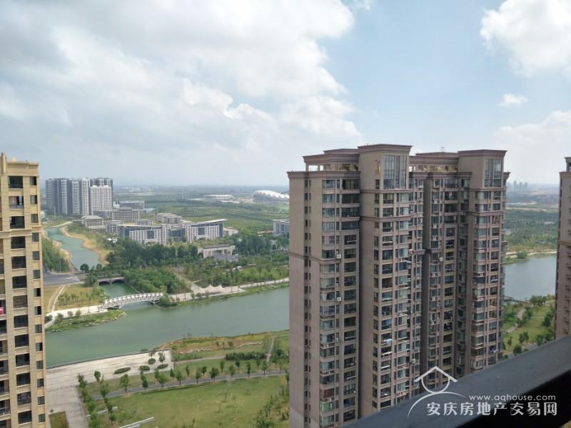 绿地四期 33楼顶层112平南北通透大三房 毛坯 随时看房