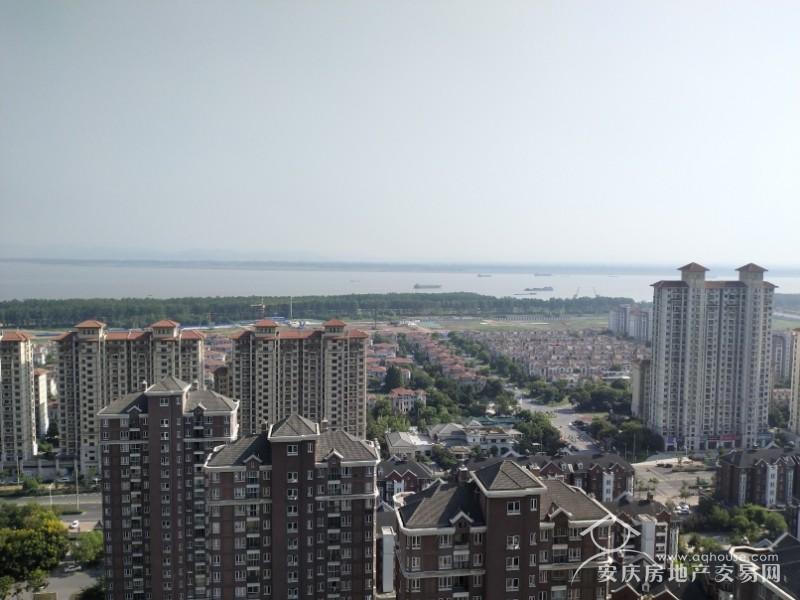 大发三期 高层江景房 104平毛坯南北通透三室 视野好无遮挡